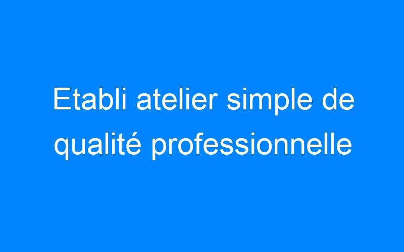 Etabli atelier simple de qualité professionnelle