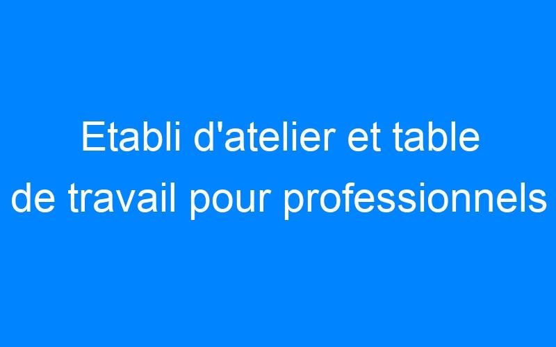 Etabli d'atelier et table de travail pour professionnels