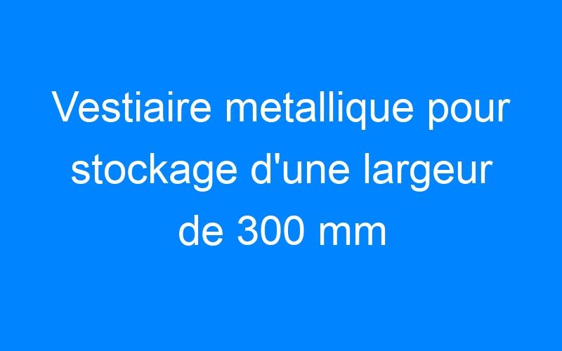 Vestiaire metallique pour stockage d'une largeur de 300 mm